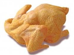 Курица Халяль охлажденная