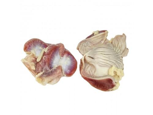 Куриные желудки в защитной среде (контейнер М)